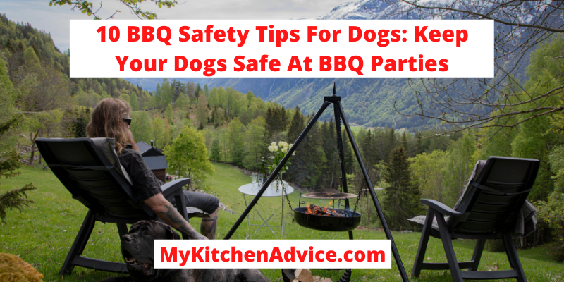 BBQ Safety Tips For Dogs